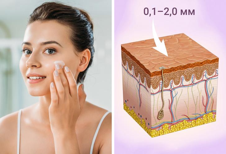 10 фактов о косметике, которые помогут сохранить красоту и сберегут ваши деньги