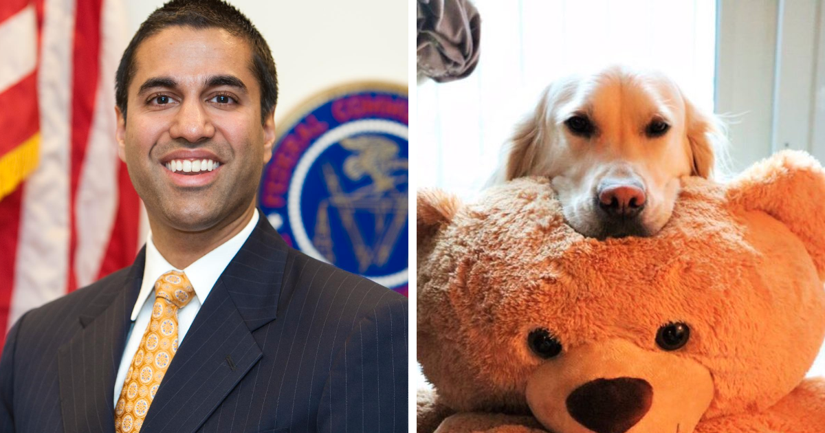 'WeRateDogs' Owner Realizes Net Neutrality Killer Ajit Pai Follows Him On Twitter, Gives Him A Taste Of His Own Medicine