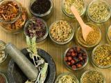 Лекарственные растения при варикозе