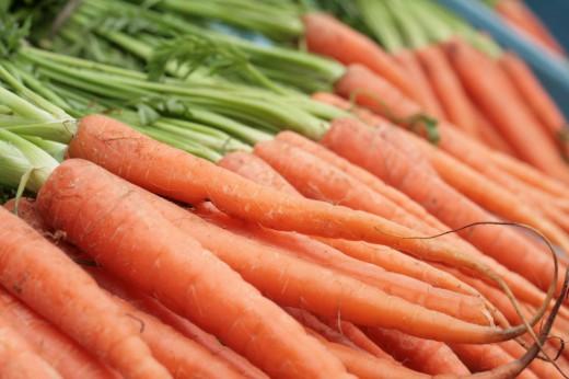 Посев моркови под зиму...