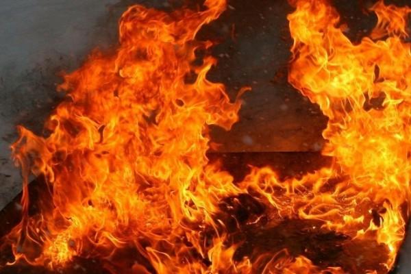 В Крыму произошел пожар в мн…
