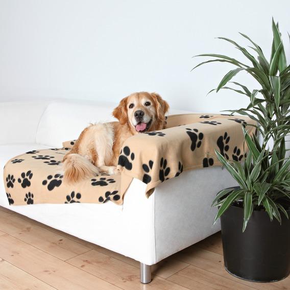 15 лайфхаков, способных облегчить жизнь хозяину собаки