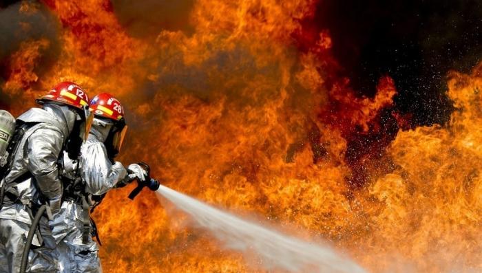 Искусственные лесные пожары нужны для того, чтобы… экстренно охладить планету