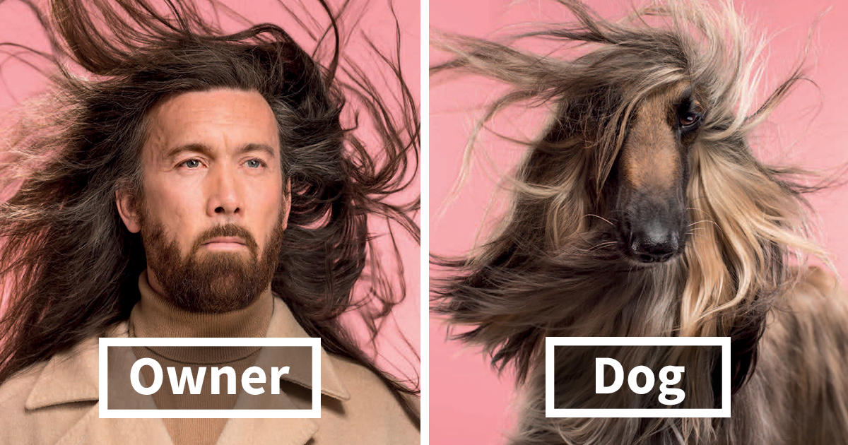 Photographer Captures Dogs And Their Owners, And The Resemblance Is Uncanny