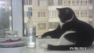 пить  или не пить эту гадость,а закуска клубника еще противнее