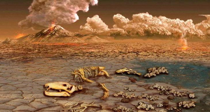 Как происходила стерилизация Земли