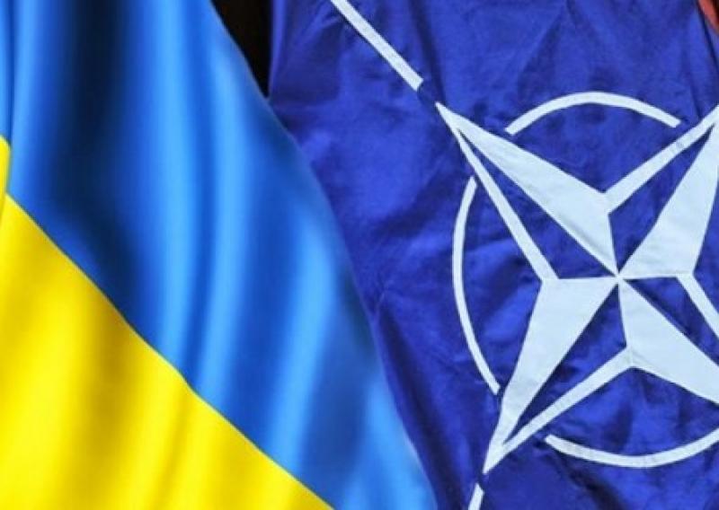 Подножка от НАТО: Альянс требует от Порошенко заменить министра обороны «воюющей страны» гражданским дядей