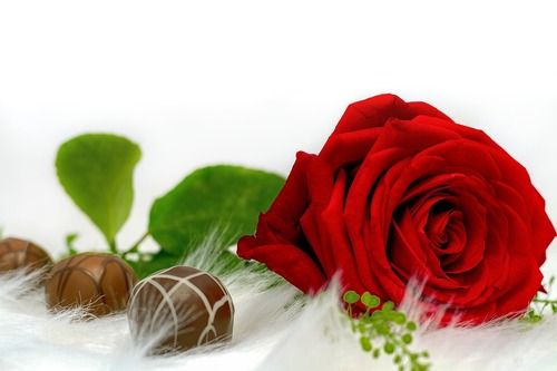 Депутатам Екатеринбурга не хватает денег на цветы и конфеты