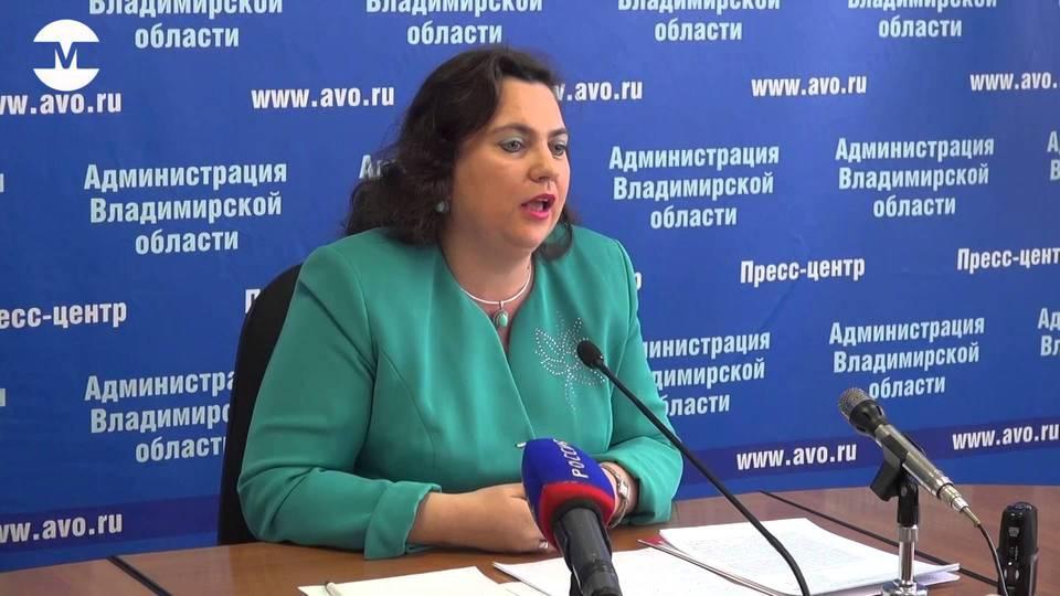 «Явка на выборы во Владимирс…