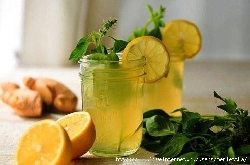 Безалкогольные напитки. Имбирный лимонад