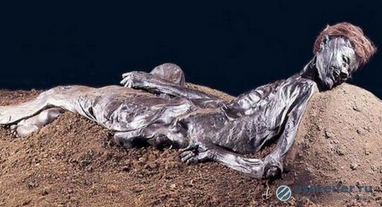 Находка из Кастеидолло: удар по теории Дарвина