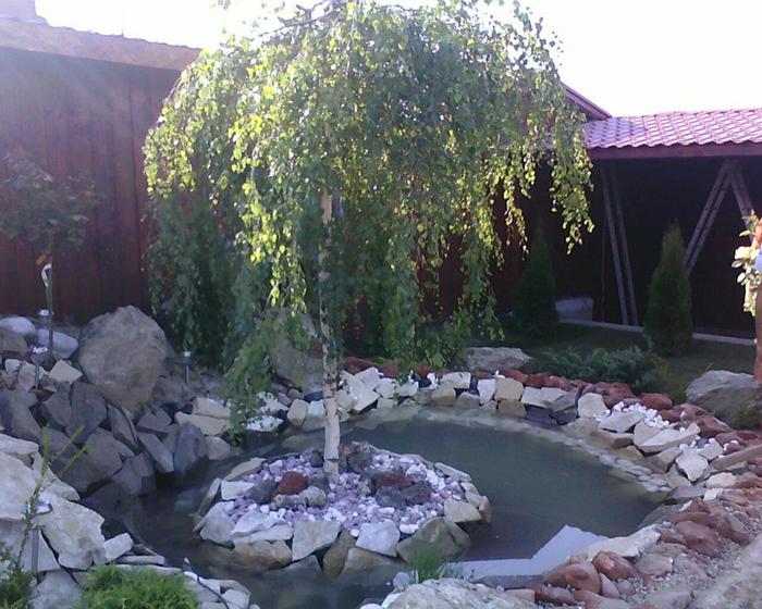 Разные идеи для сада-огорода