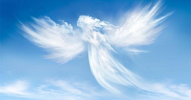 Воспитание ангела