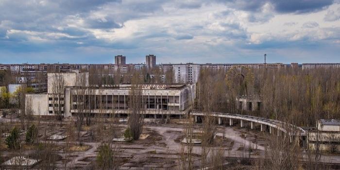 Желающих отправиться в радиоактивный тур хватает. /Фото:chernobylguide.com