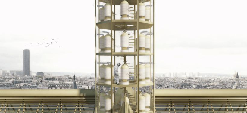 10 проектов архитекторов со всего мира, предлагающих кардинально преобразить Нотр-Дам