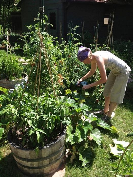 Интересный поднятый сад с деревянными ведрами придется по вкусу любителям необычных и нестандартных решений.