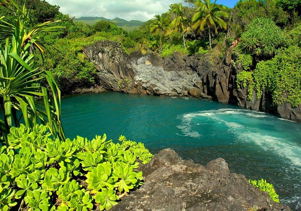 Сады острова Мауи, Гавайи