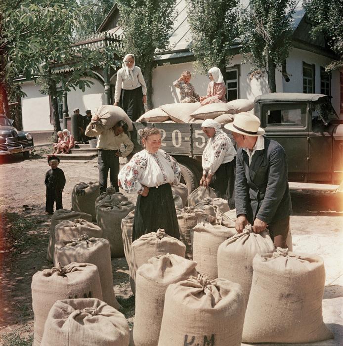 Выдача пшеницы и продуктов первой необходимости на трудодни. Украина, 1950-е годы. Фото: Semyon Osipovich Friedland.