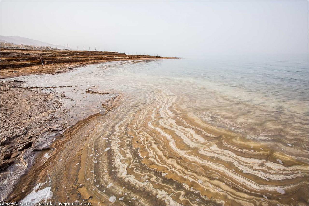 Ужасы Мёртвого моря