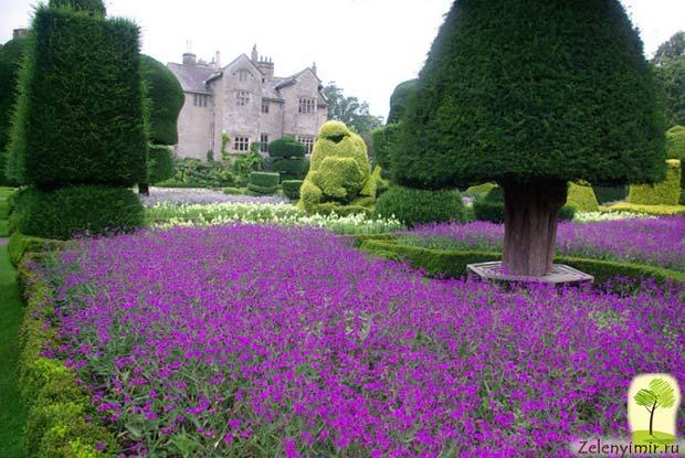 Сад Левенс Холл – самый красивый и самый ароматный сад в мире, Англия - 8