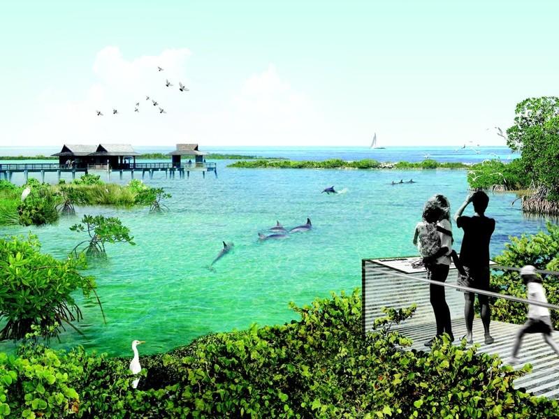 Эти дельфины долгие годы служили людям, и, после выхода на пенсию имеют право на достойную старость
