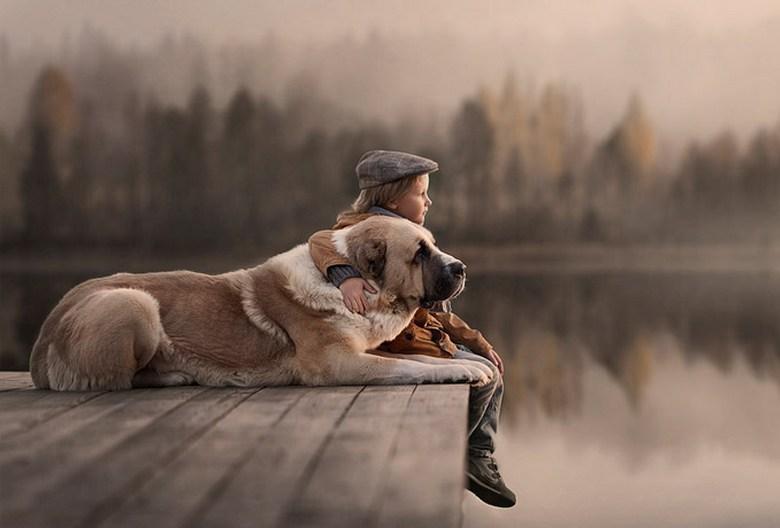 Две истории о преданности собак