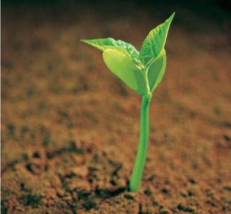 Преодоление препятствий на пути к достижению целей