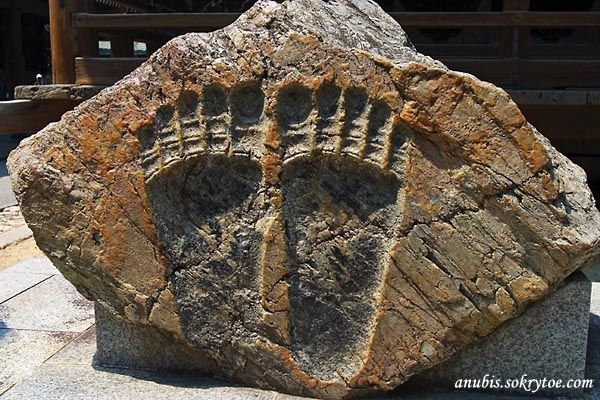 Отпечатки в камне