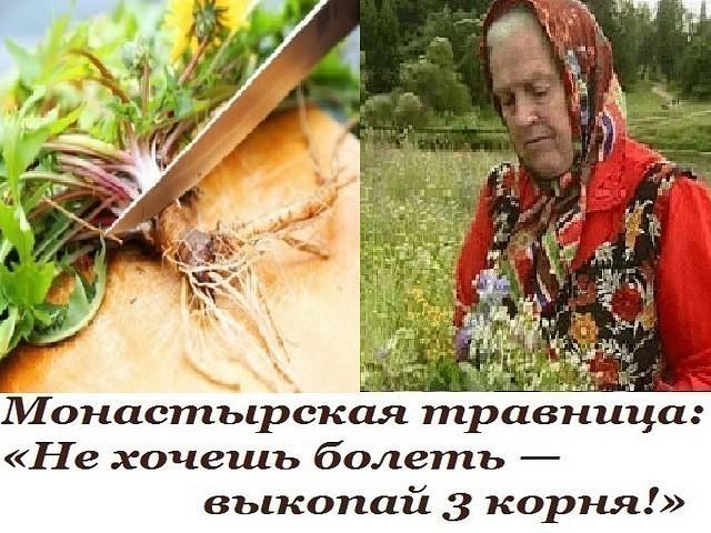 Картинки по запросу фото Зайцева Елена Федоровна — известная монастырская травница.