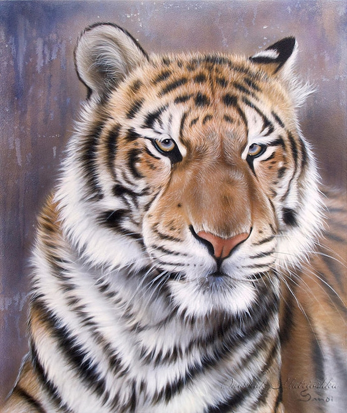 Awesome realistic drawings of animals 14