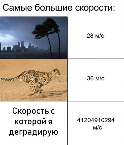 Фотоприколы, мемасы, картинки (23 шт)