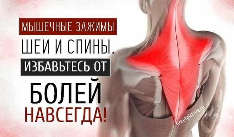 Мышечные зажимы шеи и спины: снятие боли изменением п@зы
