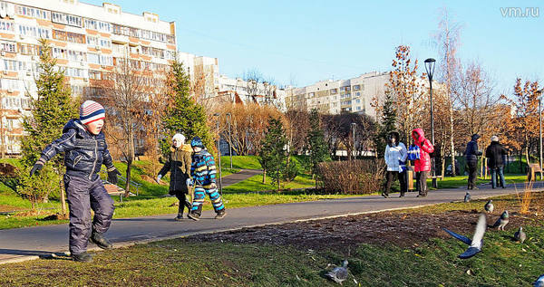 Высажено 400 деревьев в парке в пойме реки Битцы