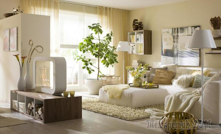 Как создать эко-настроение в квартире без особых затрат