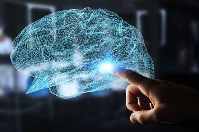 «Вскрытие» мозга. Допинги для интеллекта разделят людей на богов и глупцов?
