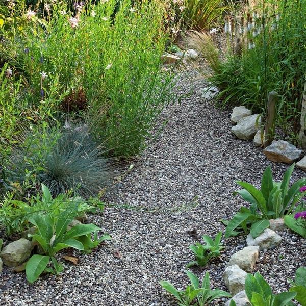 Тропинка из гравия петляет между грядками, периодически прячась за растениями.