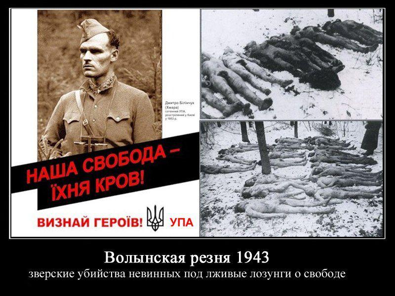 Поляки ответили на«извинения» украинцев заВолынскую резню