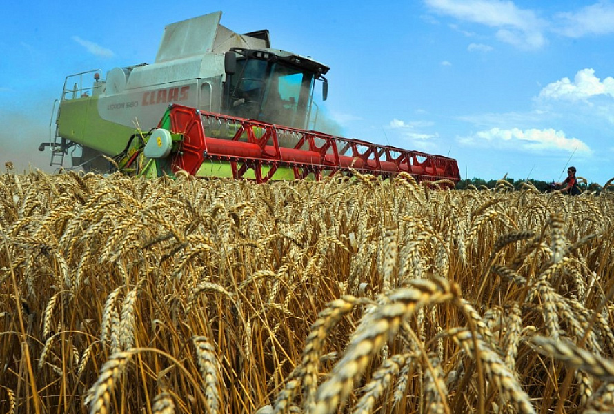 Минсельхоз России: на 1 октября собрано 100,4 млн тонн зерна