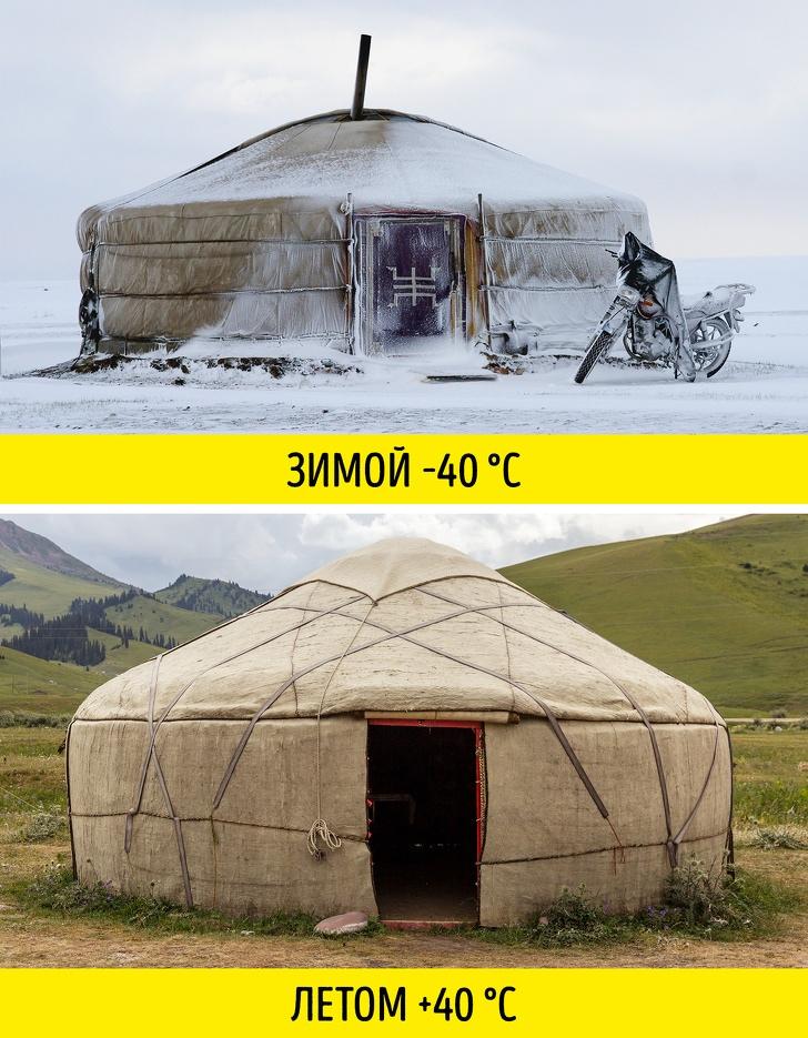 11 ярких фактов о стране, которую многие считают белым пятном на карте. Это Монголия