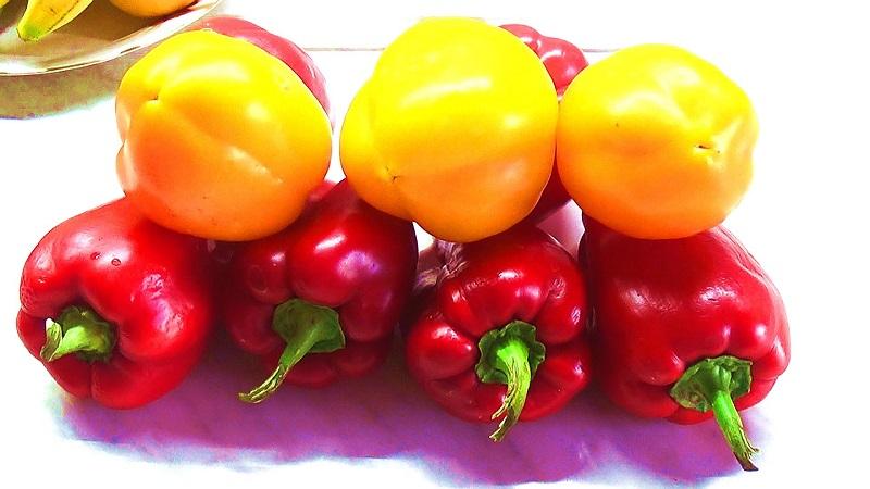 как выбрать болгарский перец