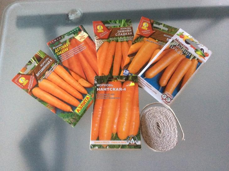 Советы по посадке моркови весной