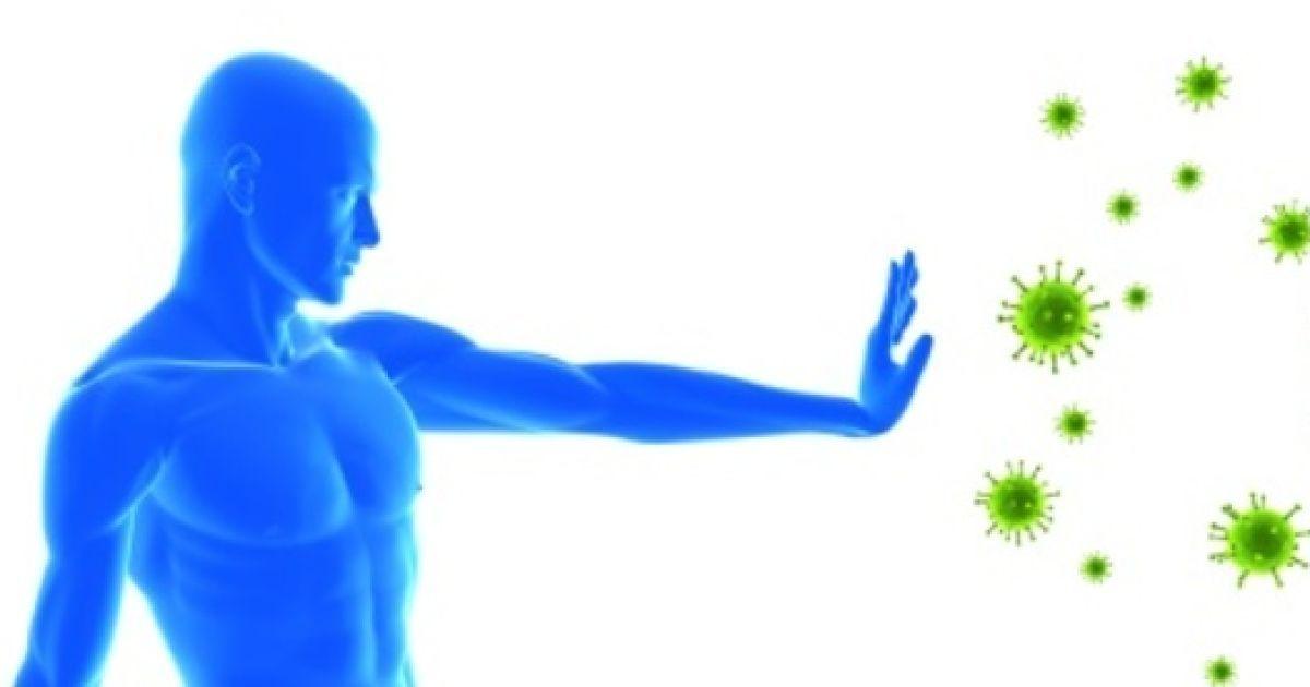 Какие средства помогут укрепить иммунную систему