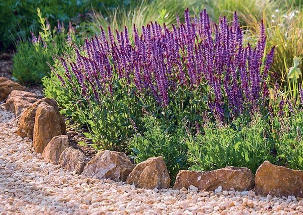 В саду в природном стиле окантовка из валунов смотрится как нельзя более гармонично. К слову, в швах такой каймы любят селиться симпатичные представители фауны - ящерицы, веретеницы и шмели.
