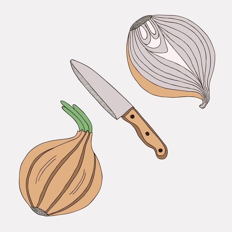 Сырой лук — источник молодос…