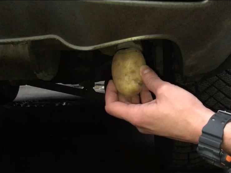 Можно ли отомстить соседу, забив картошку в выхлопную трубу его авто?