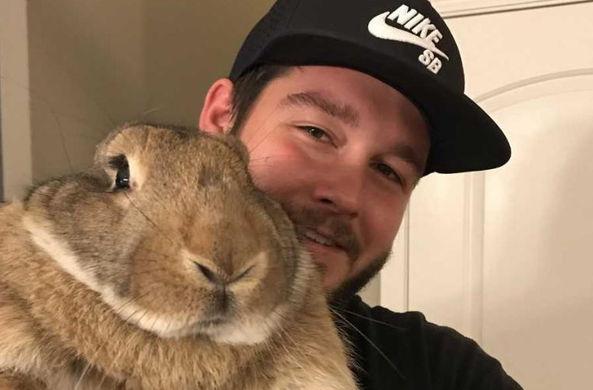 Семья из Теннесси разыскивает потерявшегося кролика