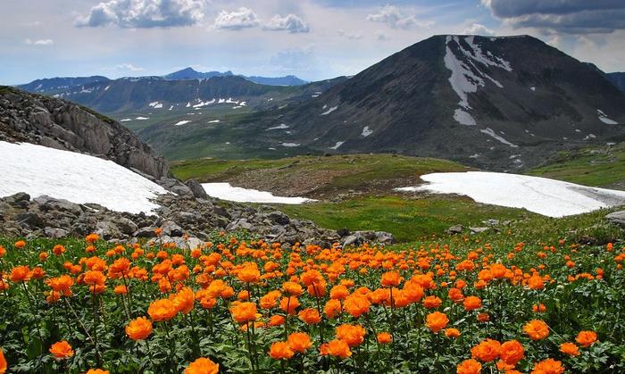 «Сибирские Альпы». Величественная красота горного Алтая