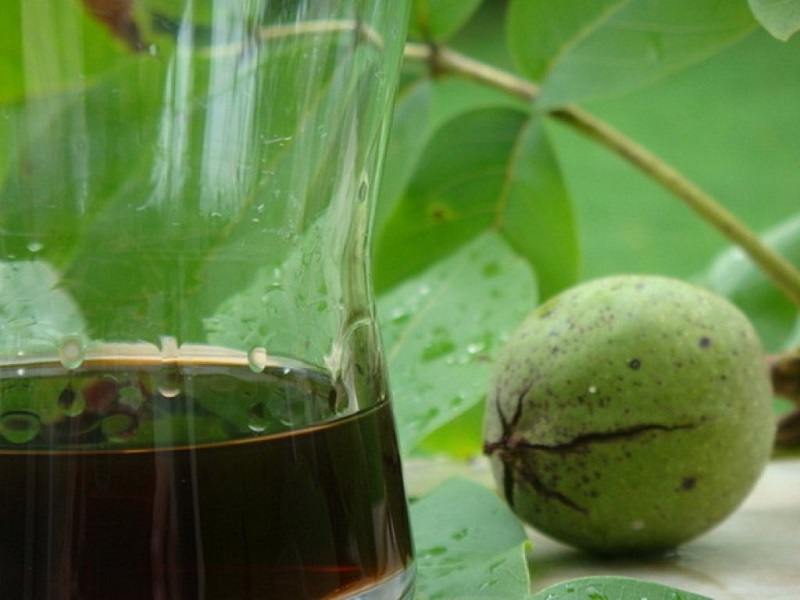 листья грецкого ореха для иммунитета