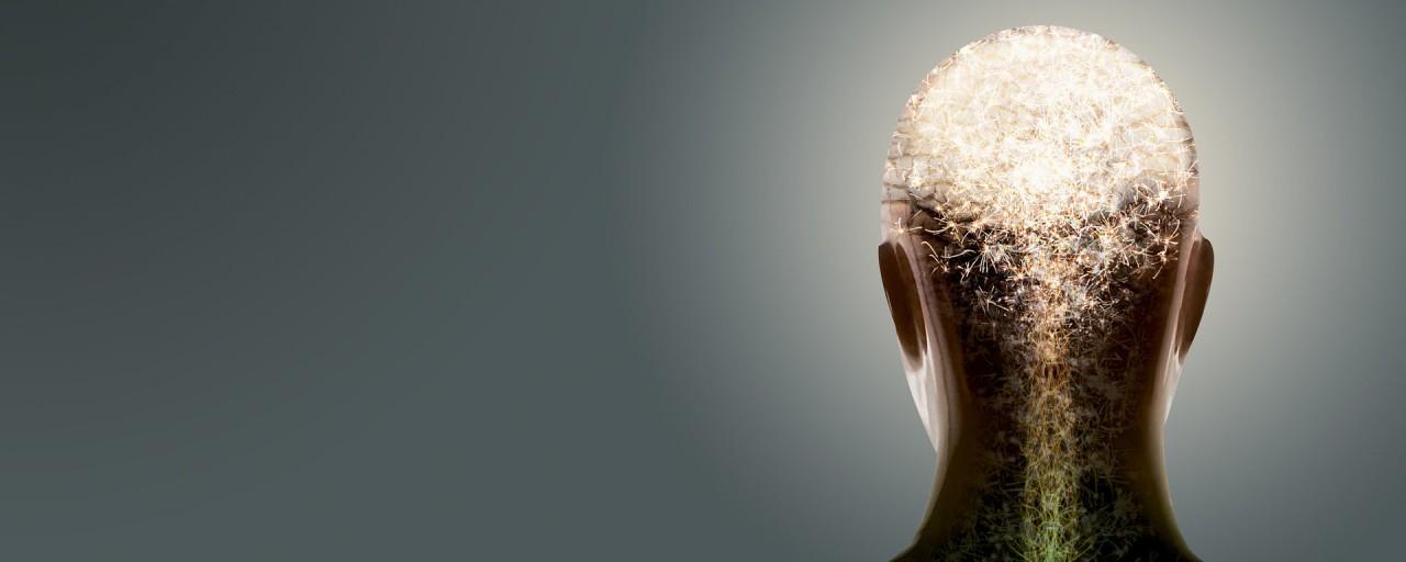 Нервные клетки не восстанавливаются?