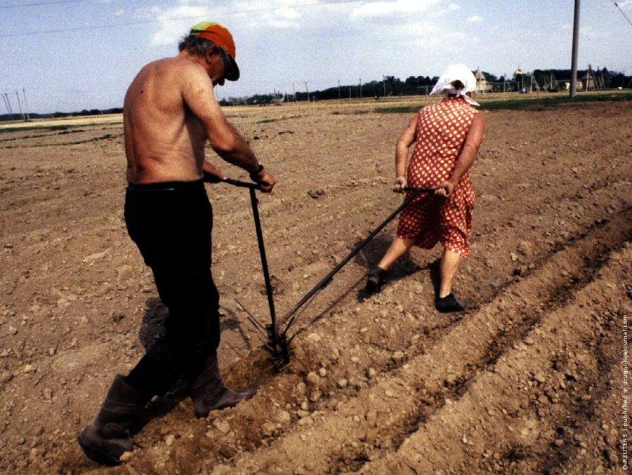 До пенсии мало кто доживет: Минтруд обеспокоен высокой смертностью среди трудоспособных мужчин